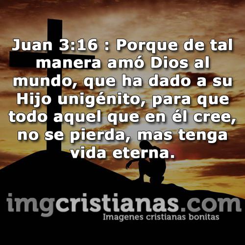 Imágenes Cristianas de versículos de la biblia